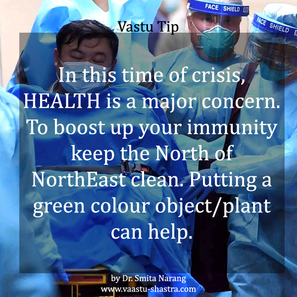 In this time of crisis, Health is a major concern. To boost up your immunity keep the North of NorthEast clean. Putting a green colour object/plant can help - Vastu Tip